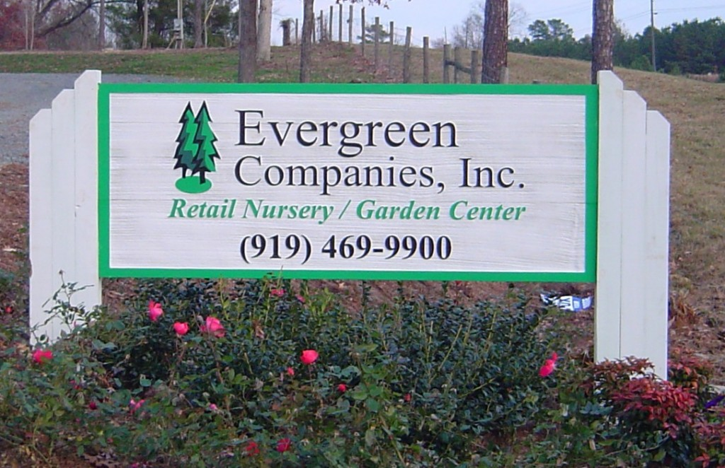 Landscaping lawn care company raleigh nc about evergreen for Lawn care companies